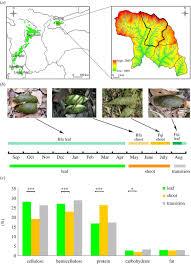 Pandas Map Seasonal Nutrition And Gut Microbiome Proceedings Of The Royal