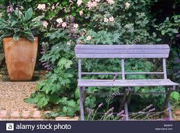 Rustic Outdoor Bench by Terracotta Planter With Hosta Blue Painted Rustic Garden Bench