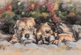 border terrier christmas cards c452x night before christmas 10 pack