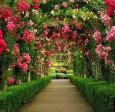 garden design garden design with images of flowers in the garden