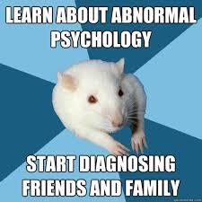 Rat Meme - psychology major rat memes quickmeme