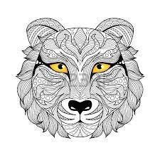 mountain lion stock photos royalty free mountain lion images