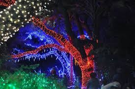 zoo lights houston 2017 dates houston zoo lights beat the crowds at houston s popular holiday event