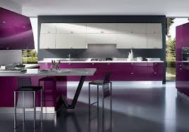 purple kitchen ideas neat design purple kitchen designs designs pictures and