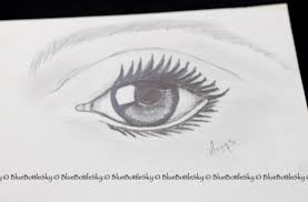 pencil sketching day 6 eyes bluebottlesky
