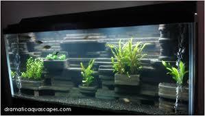 Dramatic Aquascapes Dramatic Aquascapes Diy Aquarium Background Aaron Jenison In