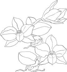 lower back tattoo designs orchid tattoo designs for men and women