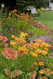 Summer Flower Garden Ideas - 298 best general images on pinterest garden ideas landscaping