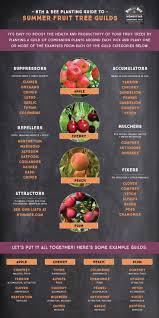 The Health Barn 2434 Best Gardening Images On Pinterest Gardening Integrated