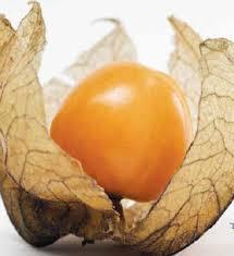edibles fruit edibles a misunderstood edible omaha
