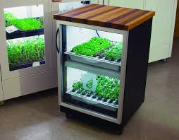 growing herbs indoors under lights urban cultivator computerized system to grow herbs and veggies in