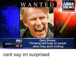 Bed Bug Meme - wanted ews channe foy4 gary busey throwing bed bugs on people 1201