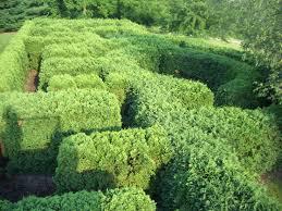 11 best nancy olson children u0027s garden at klehm rockford il