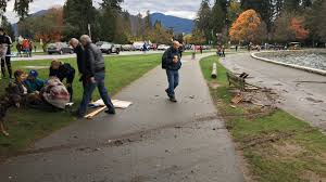 Stanley Park Stanleypark Liv Twitter by Tourist Tossed Stanley Park Horses Spooked At Anti Pipeline