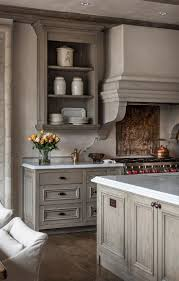 Gray Kitchen Cabinets Ideas Best 10 Light Kitchen Cabinets Ideas On Pinterest Kitchen