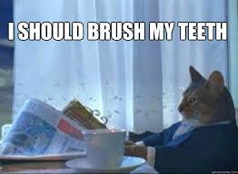 Brushing Teeth Meme - i should brush my teeth i should buy a boat cat quickmeme