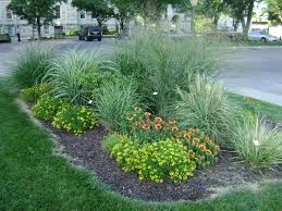 fresh landscaping with grasses and hostas 9234