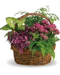 send flowers online new hampshire send flowers online online flowers send to new