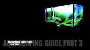 Aquascaping Guide Aquascaping Guide Part 3 Maintenance Youtube
