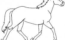 coloriage de chevaux magnifique a imprimer Archives