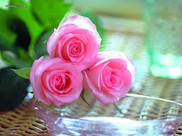 next day delivery flowers die besten 25 next day delivery gifts ideen auf