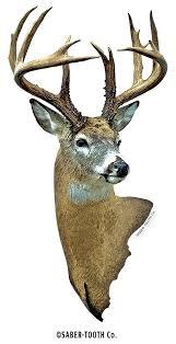 deer head amazon com buck head deer decal sticker big game collection