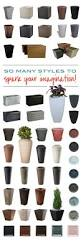 best 25 tall outdoor planters ideas on pinterest front porch