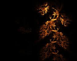 gold leaf by ji owon on deviantart