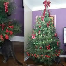 jeep christmas tree vormittag tree farm home facebook