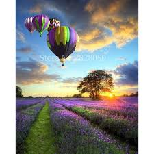 lavender air balloon diy painting by numbers handpainted