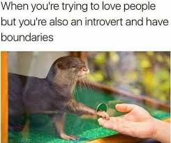 Introvert Meme - dopl3r com memes when youre trying to love people but youre also