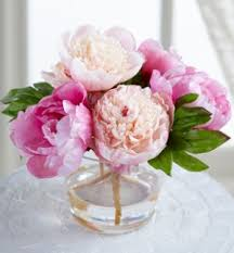 peony arrangement peony in glass vase peony arrangement soft surroundings