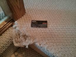Hubbell Pfbrg3 by Carpet Stretchers Calgary Carpet Vidalondon