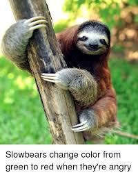 Angry Sloth Meme - 25 best memes about league memes league memes