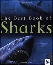 Best B The Best Book Of Sharks Claire Llewellyn 8601400458723 Amazon