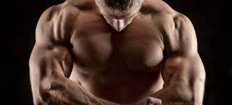 Best Forearm - the forearm workout the 5 best forearm exercises for
