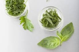 les herbes de cuisine comment connaitre et identifier les herbes fraîches technique de
