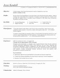 resume template for customer service customer service resume sle luxury great resume exles for