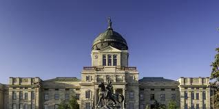montana senate election results steve daines wins 2014 midterm
