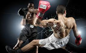 boxer dog pros and cons are boxing and mma dangerous l hfr