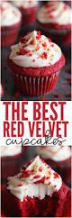 best 25 red velvet cupcakes ideas on pinterest red velvet cake
