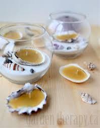 tips seashells for crafts sea shell soap seashell crafts