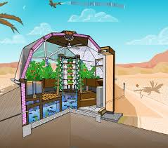 Backyard Greenhouse Designs by Best 25 Greenhouse Construction Ideas On Pinterest Greenhouses
