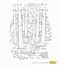le si e kolorowanka w lesie