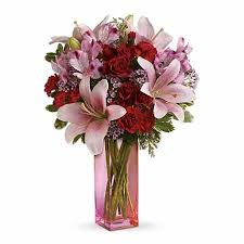 Pink Lily Flower Lilies Delivery Stargazer Lilies Delivery Lily Delivery