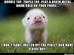Have A Nice Day Meme - enjoyable piglet wants you to have a nice day meme on imgur