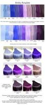 best 25 dark purple hair color ideas on pinterest dark purple