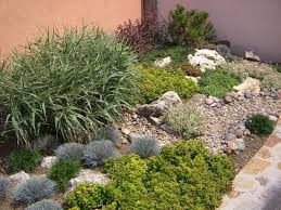 steingarten anlegen bodendecker baerenfellgras garten