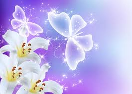 lilies blossom and butterflies stock photo image of