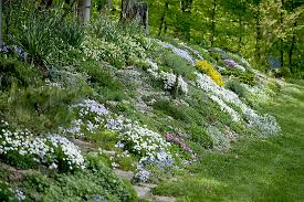 How To Create A Rock Garden Create A Faux Rock Garden On A Hillside Or Berm State By State